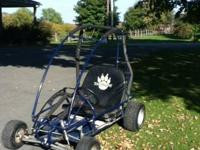 Yerf dog 2 seater go kart with 6.5 horse Tecumseh power