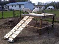 Goat Patio/ play deck , homemade asking 40.. to 50.00