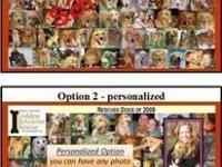 Golden Retriever - Additional Dogs - Please Read