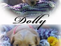 Dolly is a beautiful and loveable little girl. Her