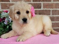 This gorgeous blonde girl is a energetic and fun little