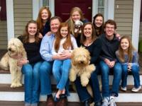 Beautiful family raised Goldendoodle Puppies offered.