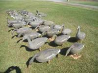 Assorted goose decoys, some full bodies, some shells,