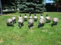 I have 12 GHG Full-Body Decoys for sale.Looking to