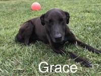 Hi! I'm Grace Elizabeth. I am about 10 years old and