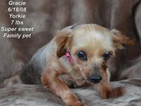 Gracie's story Please contact Constance