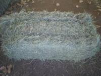 I HAVE VERY NICE GRASS HAY. SOME BERMUDA BALES AND SOME