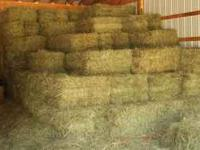 Green Grass hay, this years 2011 cutting, ALWAYS been