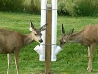 Prepare for deer season! Homemade gravity feeders.