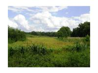 This 50 acre tract is located on Warrior Creek Church