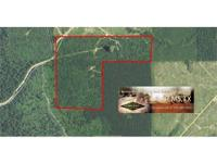 80 acre turn-key searching home with camp and pond in
