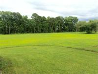 Beautiful 12 acre lot Zoned C-1, ideal property for