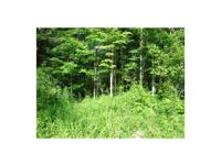 New York wooded land for sale: The property is almost