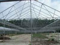 8 BAYS FROM A CLOSING GREENHOUSE FOR SALE MADE BY NEXUS