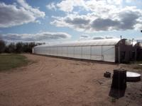 5,632 sq. ft. gutter-connect greenhouse with