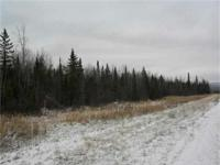 Michigan Vacant Land for Sale! Located in Greenland