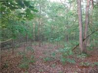 10 wooded acres located just off of highway EE outside