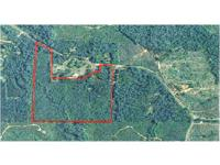 88 ac close to Greenville, only minutes from Wal-mart