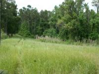 This property is located inside the city limits of