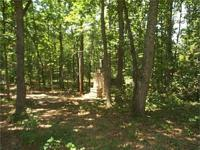 BUILDING LOT-SENGER MOUNTAIN L Corner wooded structure