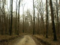 Located just SE of Greenwood, MS, this tract has it