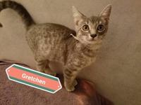 Gretchen's story Hello there! My name is Gretchen, and