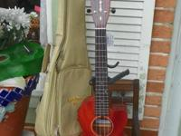 A bigger ukulele with a strong mahogany top, Grover