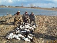 Guided Spring Snow Goose Hunts......$75 per day