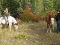 D & S Trails~ gives guided trail rides in the scenic