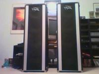 Peavey guitar speakers. These speakers are 4 feet tall