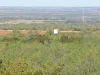 Recreational land for sale south of Paducah, TX in King