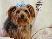 Hadley's story Please contact Constance