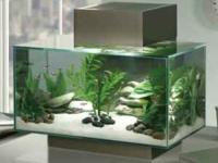 For sale is a Fluval Edge Aquarium kit. It is a modern