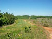 163 ACRE TIMBER & & RECREATIONAL TRACT. Located near