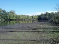 I have a great waterfowl property for lease in Hancock