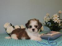 Renny is a very handsome little boy with beautiful,