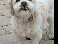 Hannah's story Hannah is a 8 year old, spayed female