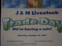 COME ON OUT BRING YOUR HORSE TO RIDE BRING IT TO SELL
