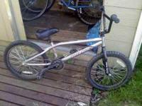 I have a silver Haro x3 bmx bike that I used when I was