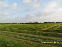 HAY 4 SALE GOOD CLEAN COASTAL HAY FERTILIZED AND