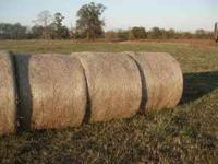 Hay for sale, 4ft wide by 5ft+ high. Hay is mostly