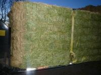 3 BALES OF 3X4X8 BALES OF ALFALFA 240.00 EACH THE LAST