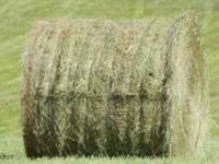 274 Bales of good Lespadiza grass hay for sale they are