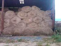 round bales of hay stored inside on pallets, mixed hay