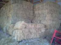 Really nice grass hay for sale. Never rained on, easy