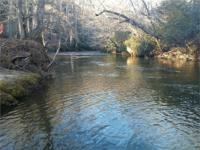 "0.84 Acres With 238'68"" Trout Creek Frontage ONLY"