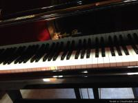 This Hazelton Baby Grand Piano HB - 140D is in