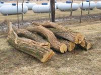 We have fresh cut hedge post for sale. We have all