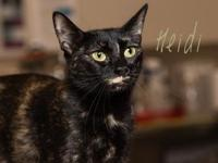 Heidi's story Hi, I'm Heidi! I came to Foothills with