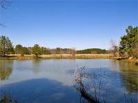 Franklin County, NC farm for sale in the Epsom